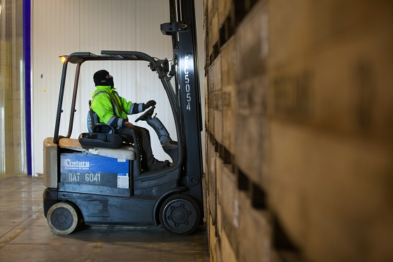 Forklift operators ensure the smooth flow of fruit and packaging.